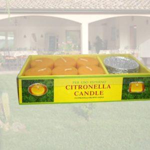Confezione 6 citronelle con contenitore alluminio