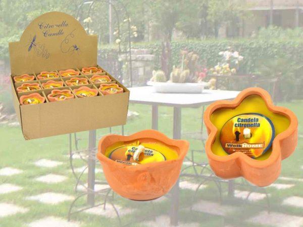 Set 6 Vasetti In Coccio Citronella Fiore