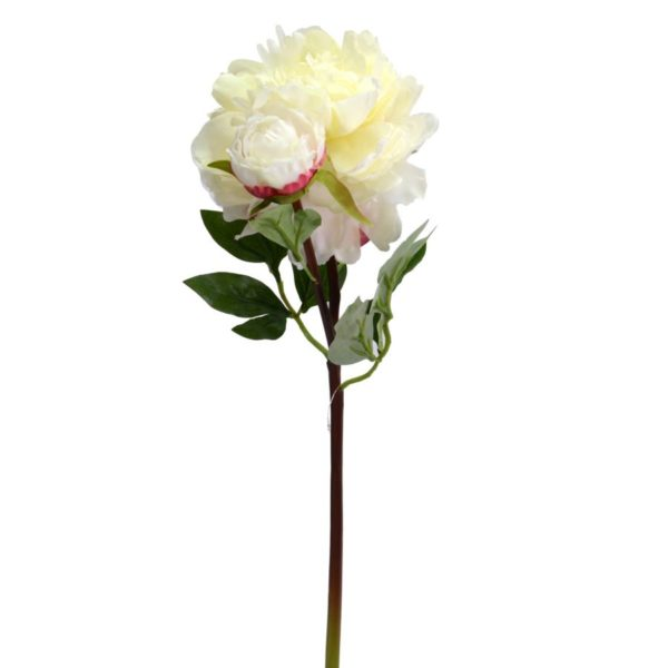 Fiore Modello Peonia Colore Bianco