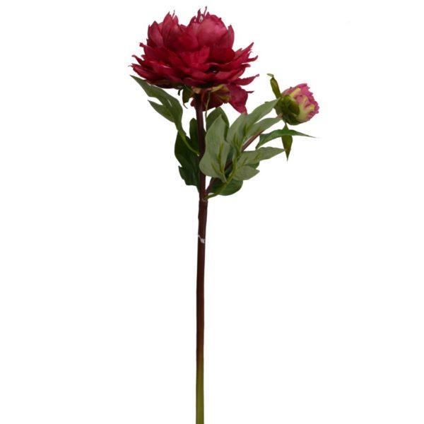 Fiore Modello Peonia Colore Rosso