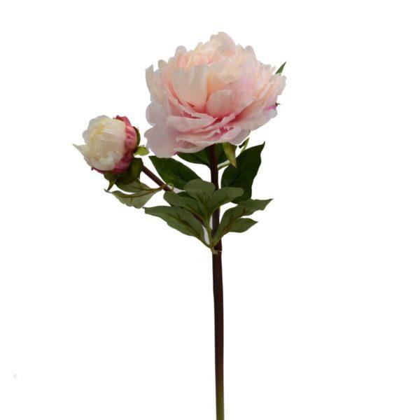 Fiore Modello Peonia Colore Rosa