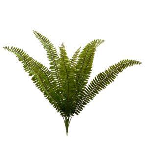 Decorazione Ornamentale Mazzo Verde Felce