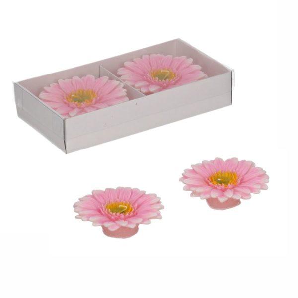 Set 2 Candele Fiore Margherita Rosa